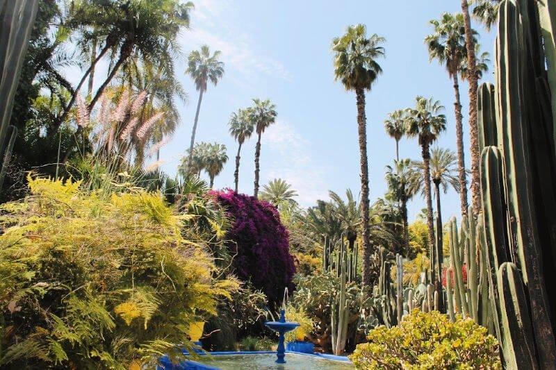 El Jardín de Majorelle, el sueño de Saint Lauren