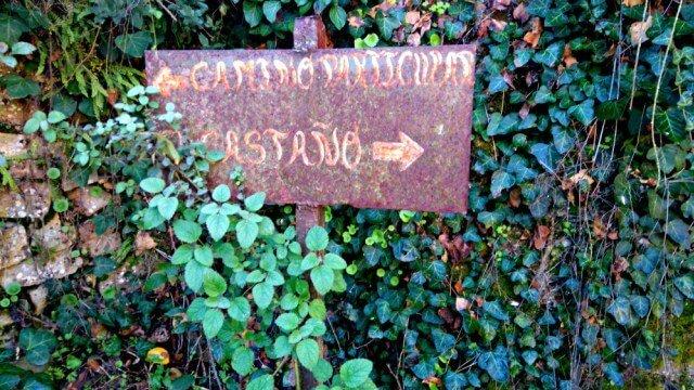 Camino particular - Castaño del Robledo
