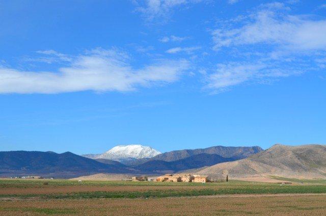 La bella Sagra en Granada