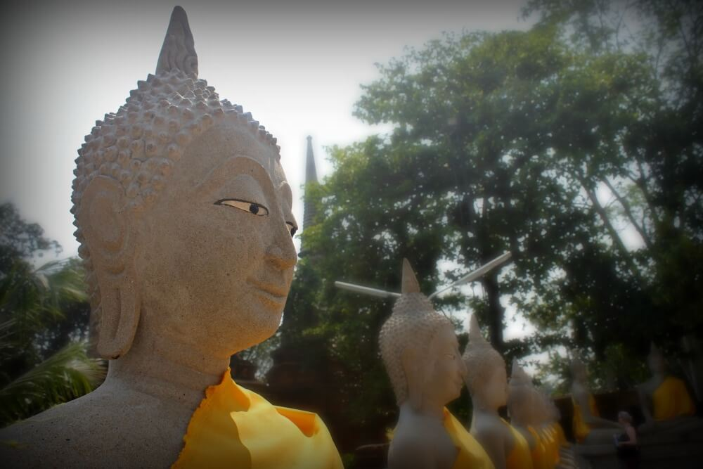 Buda tiene las orejas largas