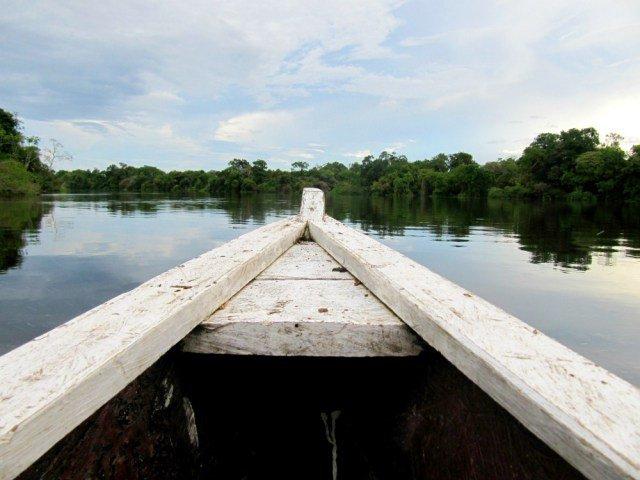 Cómo organizar un viaje al Amazonas
