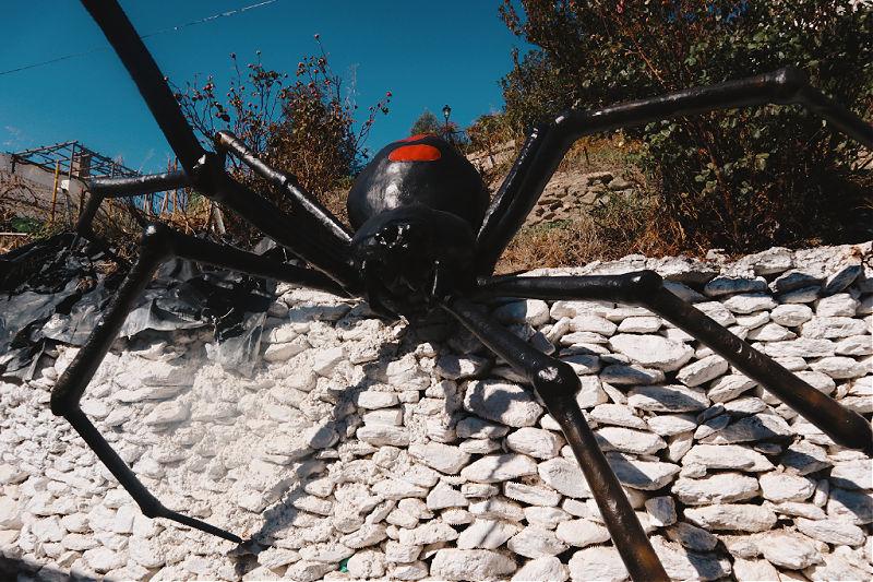 La araña tejedora de sueños