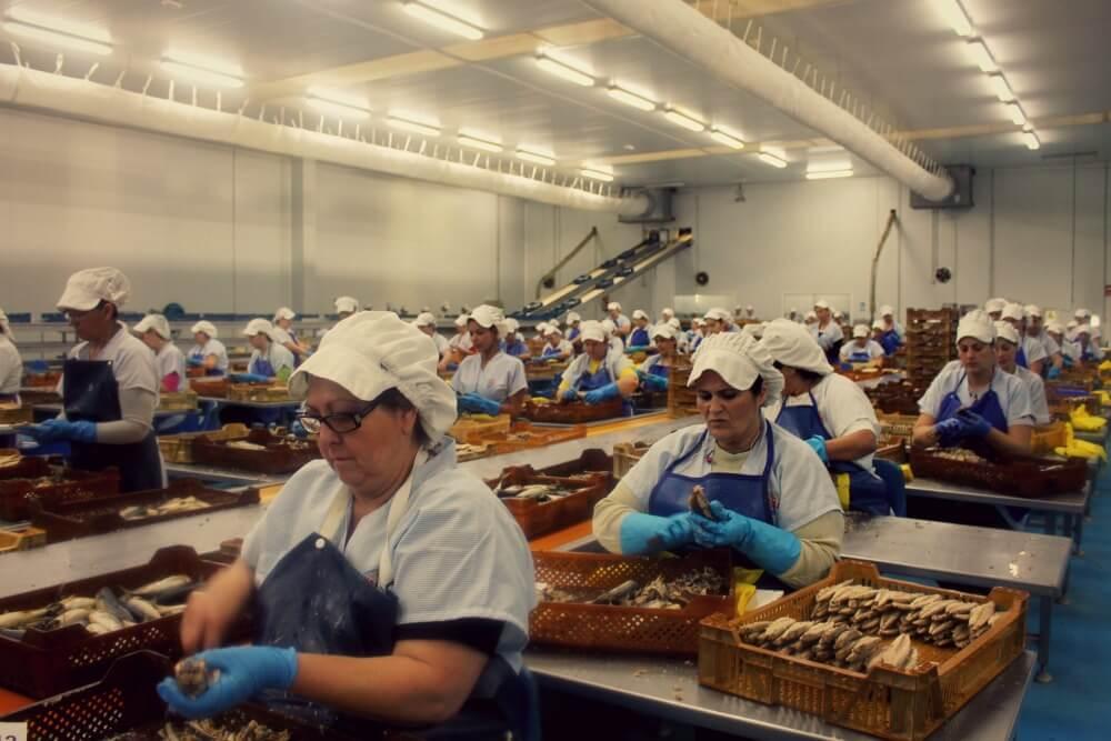 Visitar a las trabajadoras de la conservera USISA en Isla Cristina