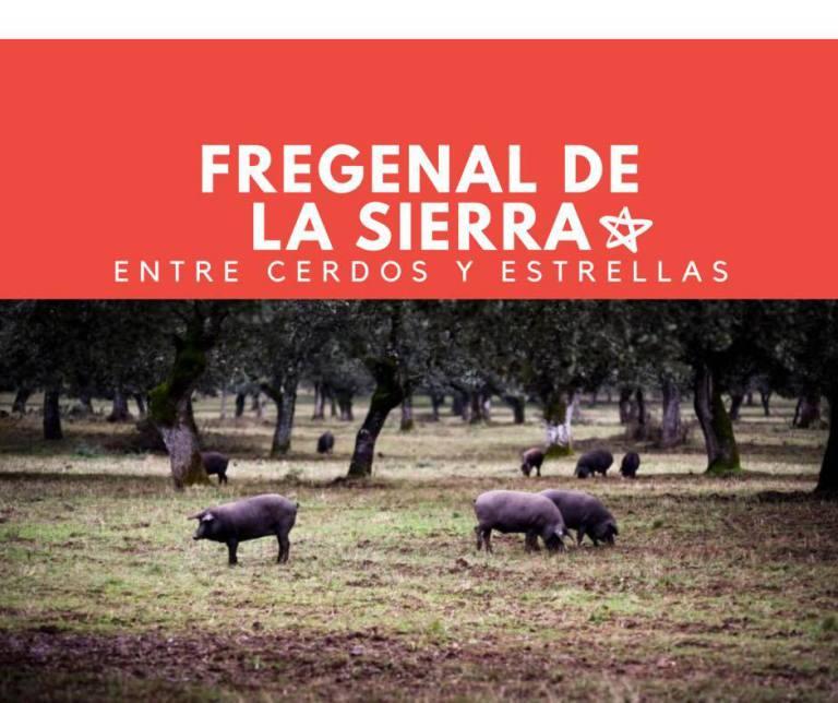Fregenal de la Sierra, entre cerdos y estrellas