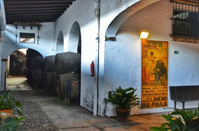 Visitar las bodegas Barbadillo de Sanlúcar