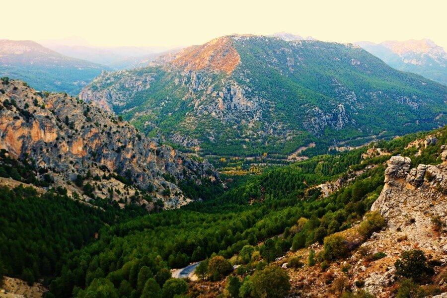Despiernacaballos en la Sierra de Cazorla
