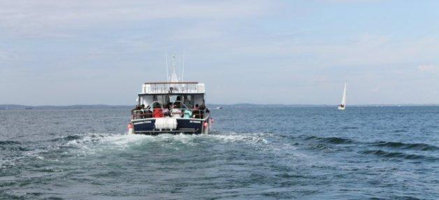 Barco por la Bahía de Arcachon