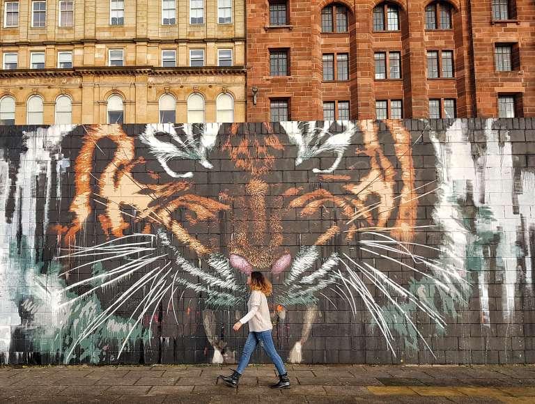 Graffiti de Tigre en Glasgow
