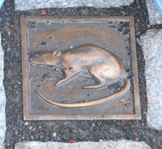 Ratón en el suelo en Hamelín