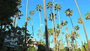 Ruta por Beverly Hills - Qué hacer en Los Ángeles