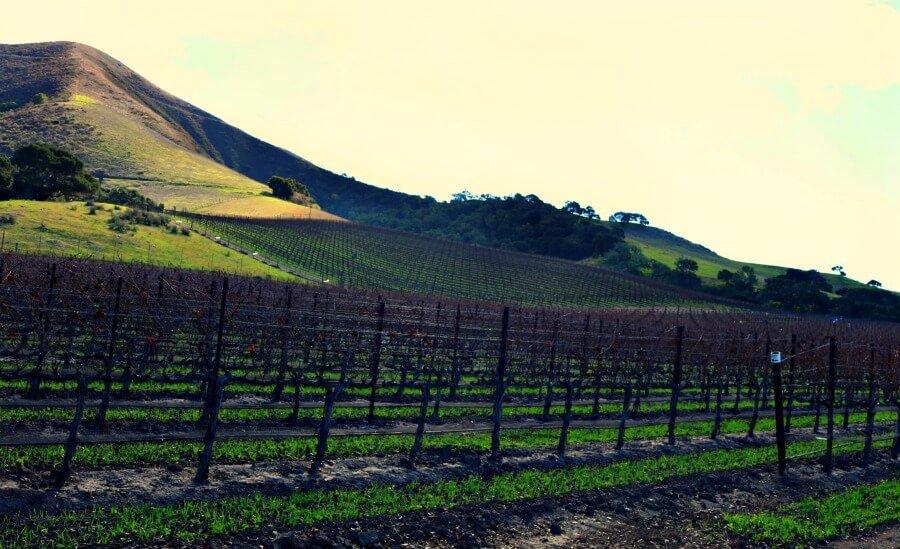 Paisajes del Valle de Santa Ynez en California