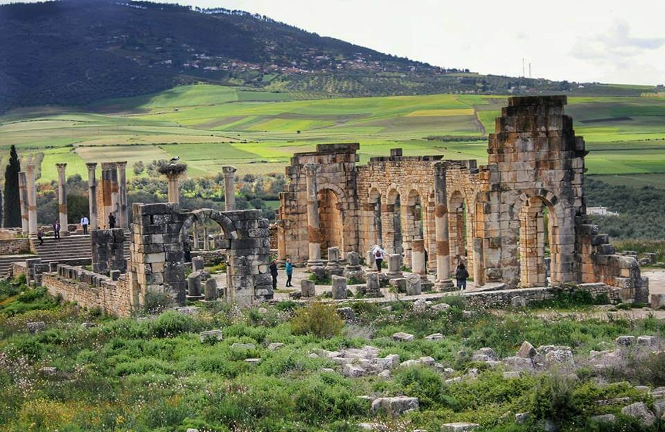 Volubilis, un tesoro escondido en Marruecos