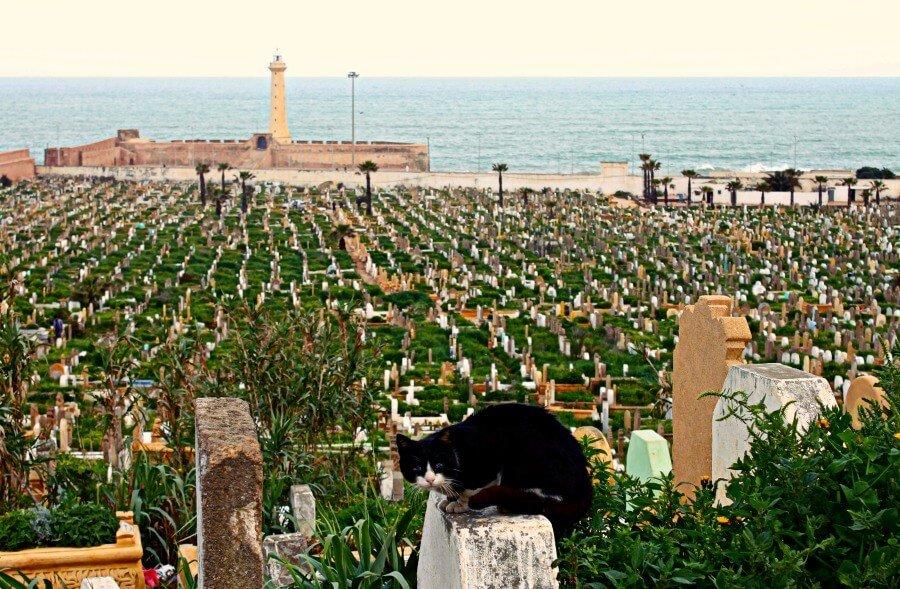 Cementerio musulmán