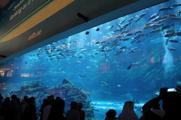 Acuario de Dubái