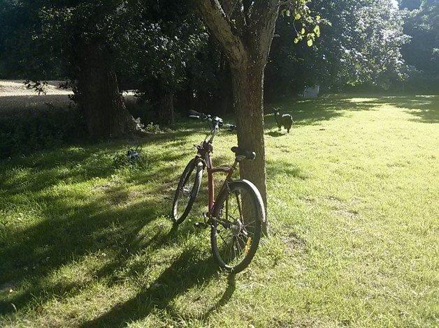 Bicicletas en la Bretaña francesa