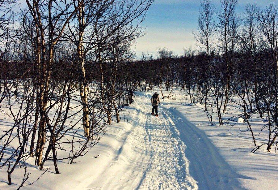Expedición de raquetas en la nieve