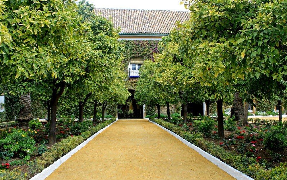 Jardín de entrada al Palacio de las Dueñas de Sevilla
