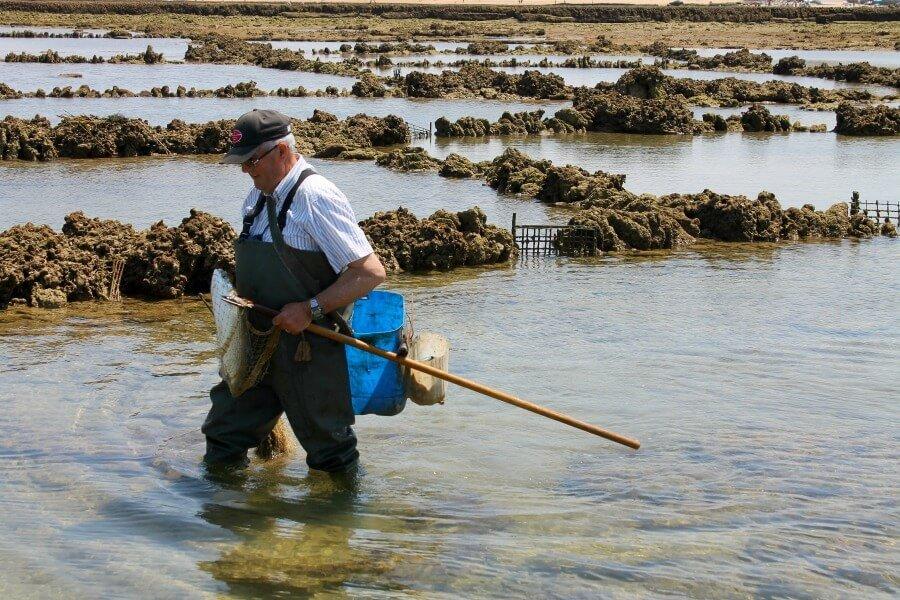 Herramientas para pescar en Los Corrales de Chipiona