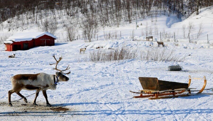Paisajes de la Laponia Noruega