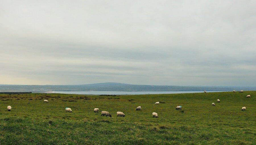 Viaje a Irlanda de una semana, ruta en coche