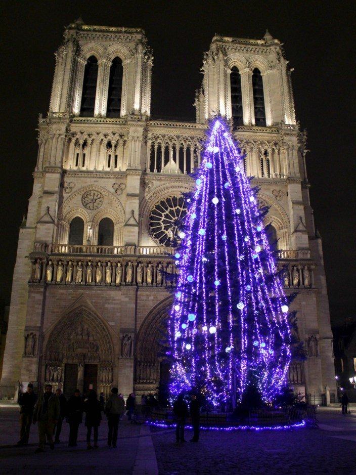 El árbol de navidad de Notre Dame - París en navidad 2019