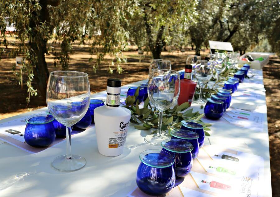 Cata de aceites en Sevilla - Oleoturismo