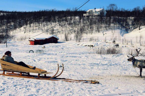 Qué hacer en la Laponia Noruega