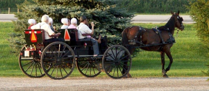 Amish de Filadelfia, las mejores excursiones desde Nueva York