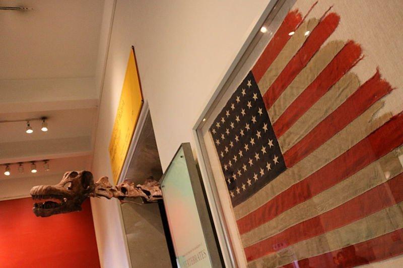 Qué hacer en Nueva York - Visitar un museo