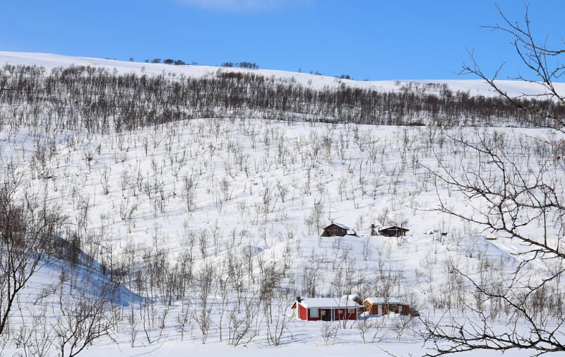 Fotos de cuento si viajas a Noruega con nieve