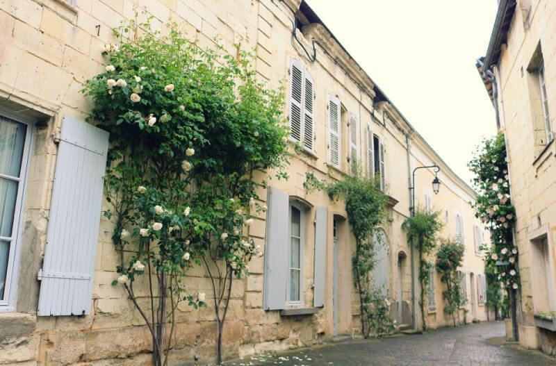 Flores en el pueblo de Fontevraud en el Valle del Loira