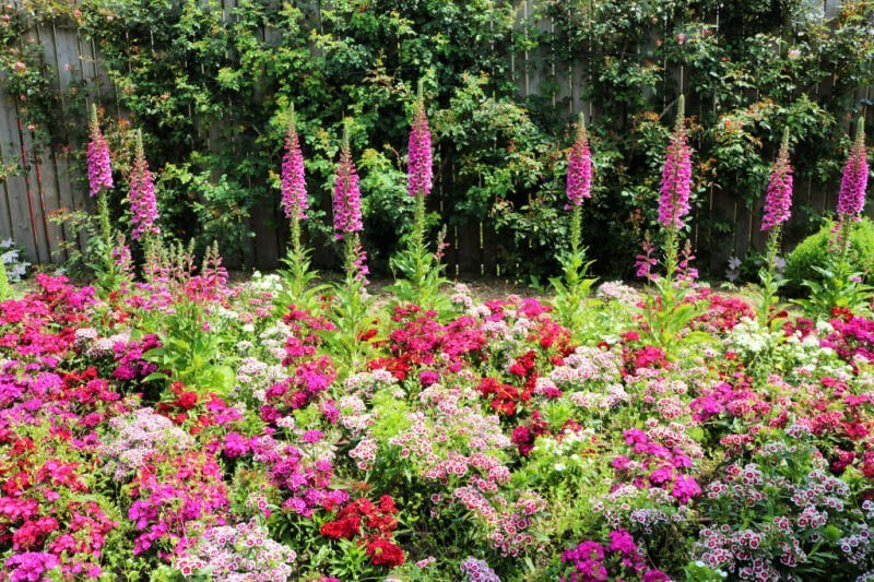 Parque Terra Botánica y sus miles de flores