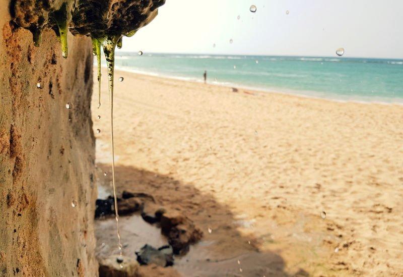 Playa de Caños de Meca, una de las mejores playas de Cádiz