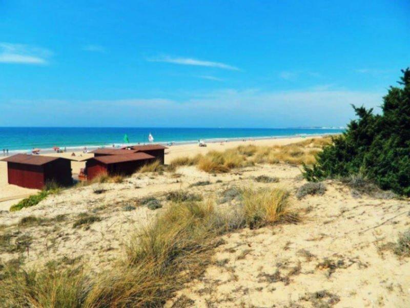 Playa de la Barrosa - Mejores playas de Cádiz