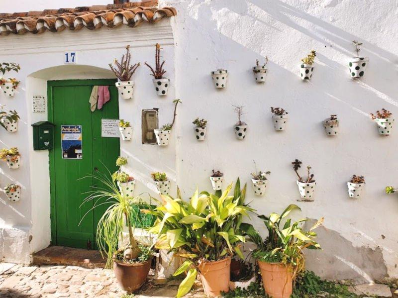 Casa con macetas en Castellar