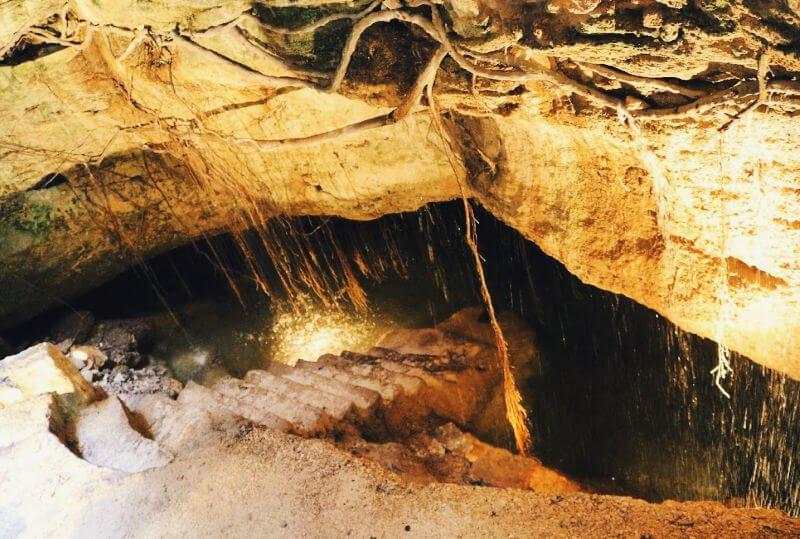 Cenote escondido en una tienda de la Quinta Avenida
