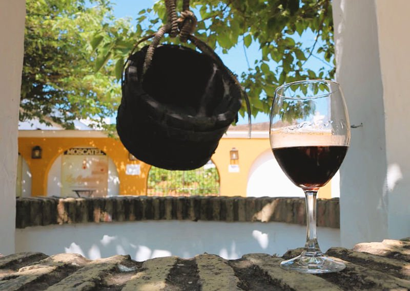 Bodega de vino Moscatel con cata