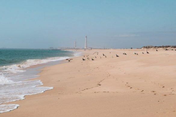 Playas del Algarve - Culatra