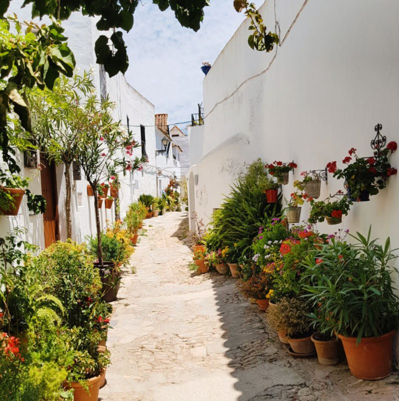 Calles llenas de flores en Vejer