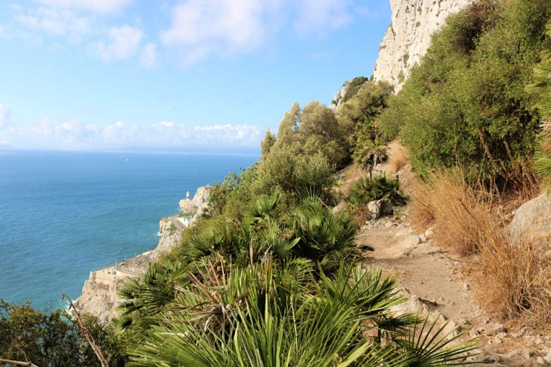 Qué hacer en Gibraltar: subir los Mediterranean Steps