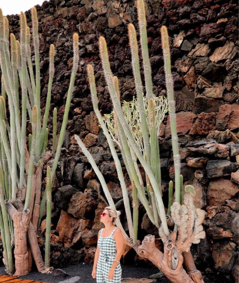 Qué ver en Lanzarote, sus miles de cactus