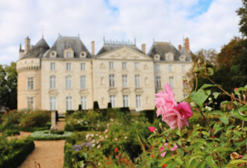 Rosas de los jardines del castillo del Valle del Loira