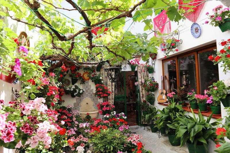 Preciosos patios cordobeses en Priego llenos de flores