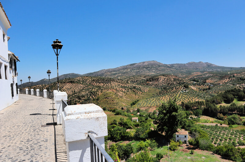 Vistas a los campos y olivos desde el Balcón del Adarveel Adarve
