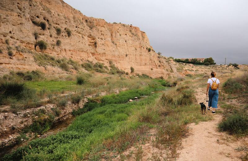 Ruta por el Río Seco actividades en El Campello